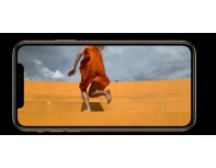Mobilusis telefonas APPLE iPhone XS Max