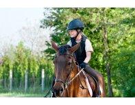 Izjāde ar zirgu un individuāla apmācība iesācējiem