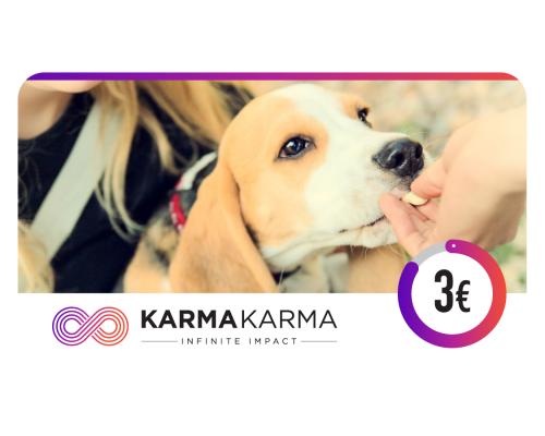 Электронный благотворительный сертификат KARMAKARMA номиналом 3 евро