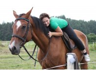 Horse riding and individual training for beginners