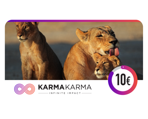 KARMAKARMA Charity eGift Card 10€